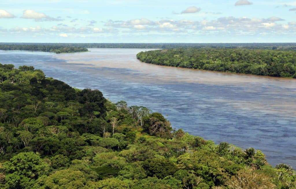 Amazonas from the sky