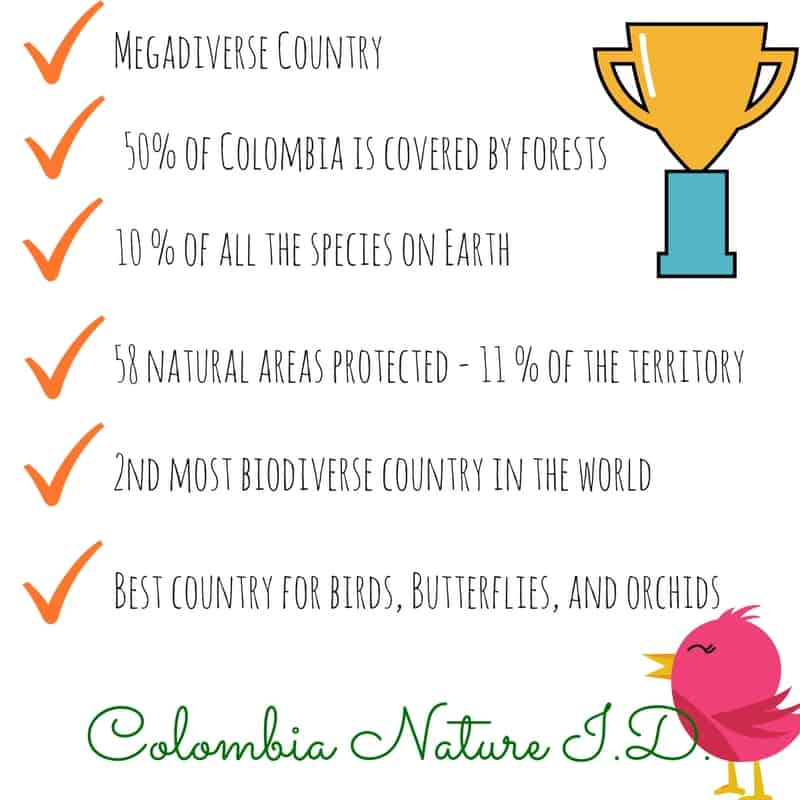 Statistic Environment and nature in Colombia