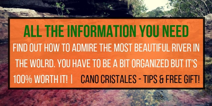 River Of Five Colors, Insider Travel Guide To Caño Cristales (2019)