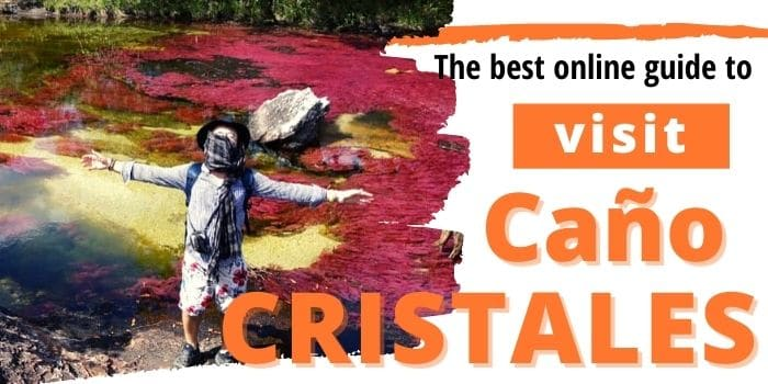 Dazzling rainbow river 🌈 in Colombia: visit Caño Cristales now