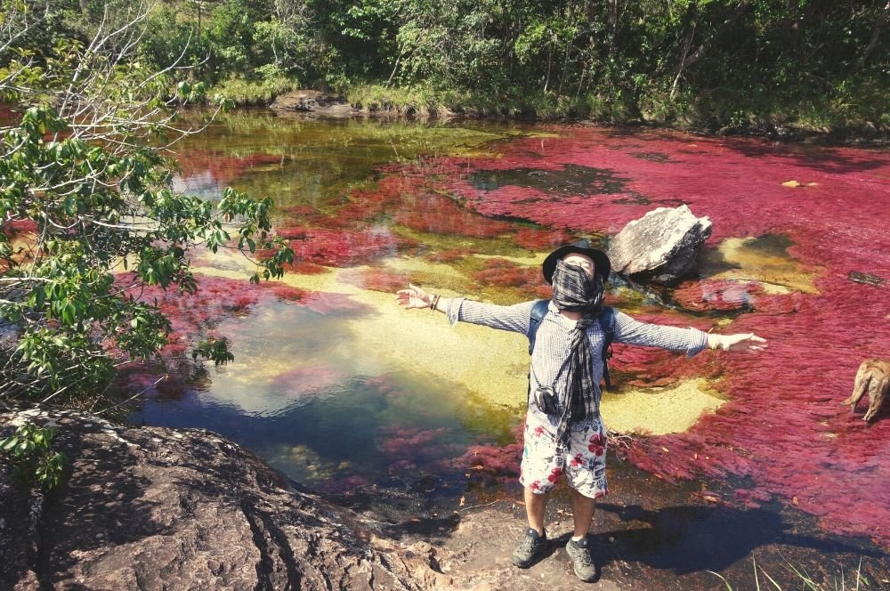 Add Caño Cristales La Macarena in your Colombia Itinerary