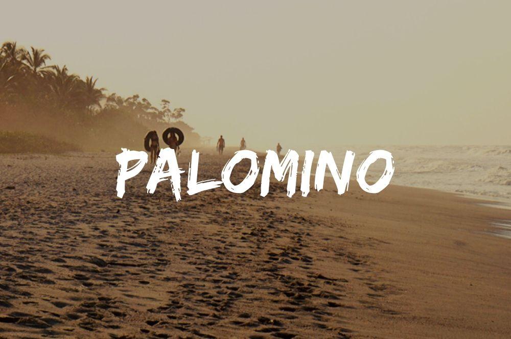 Palomino sur la cote caraibe colombienne