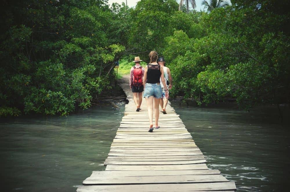 Bridge Isla Mucura San Bernardo