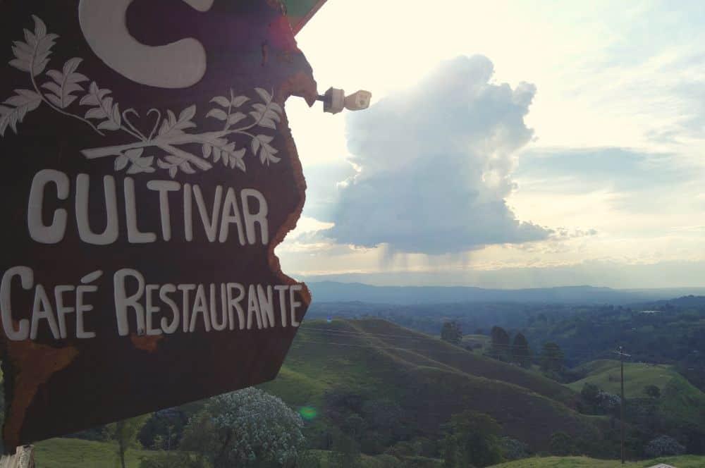 Cultivar Cafe Filandia