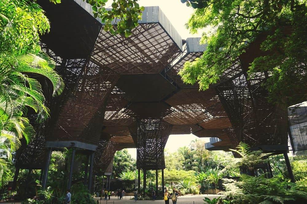 Jardin Botanico Medellin (1)