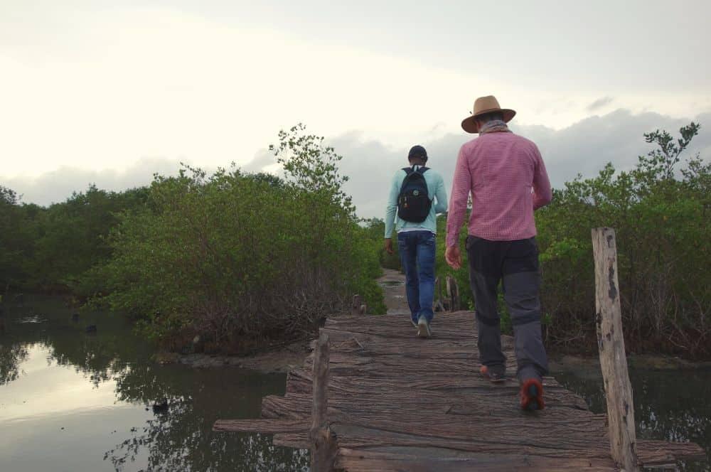 Mangroves Rincon del Mar (1)