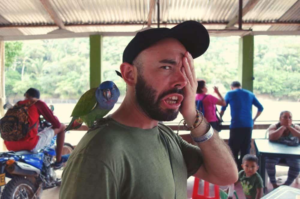 Parrot San Jose del Guaviare