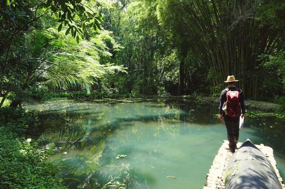 Reserva Caoba Paso del Mango