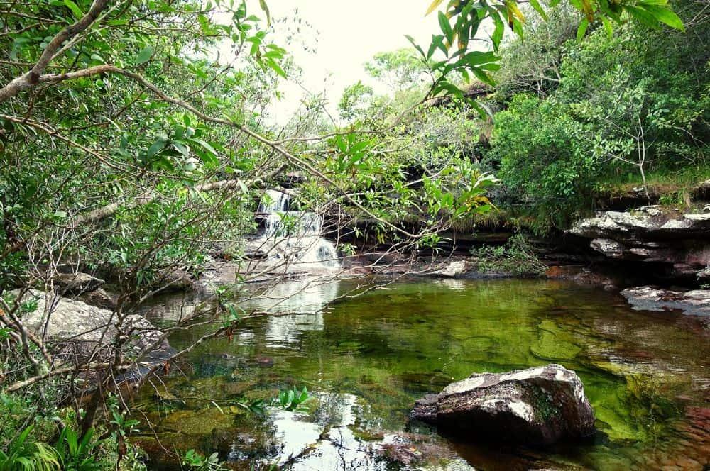 River Caño Cristales La Macarena