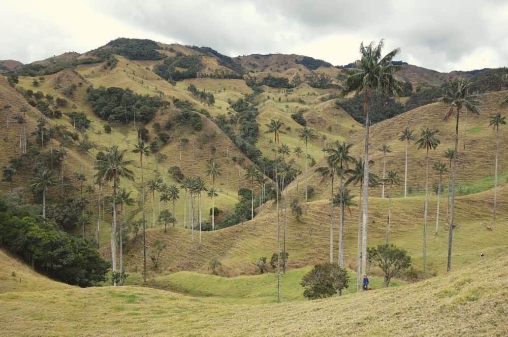 Valle de Samaria Salamina