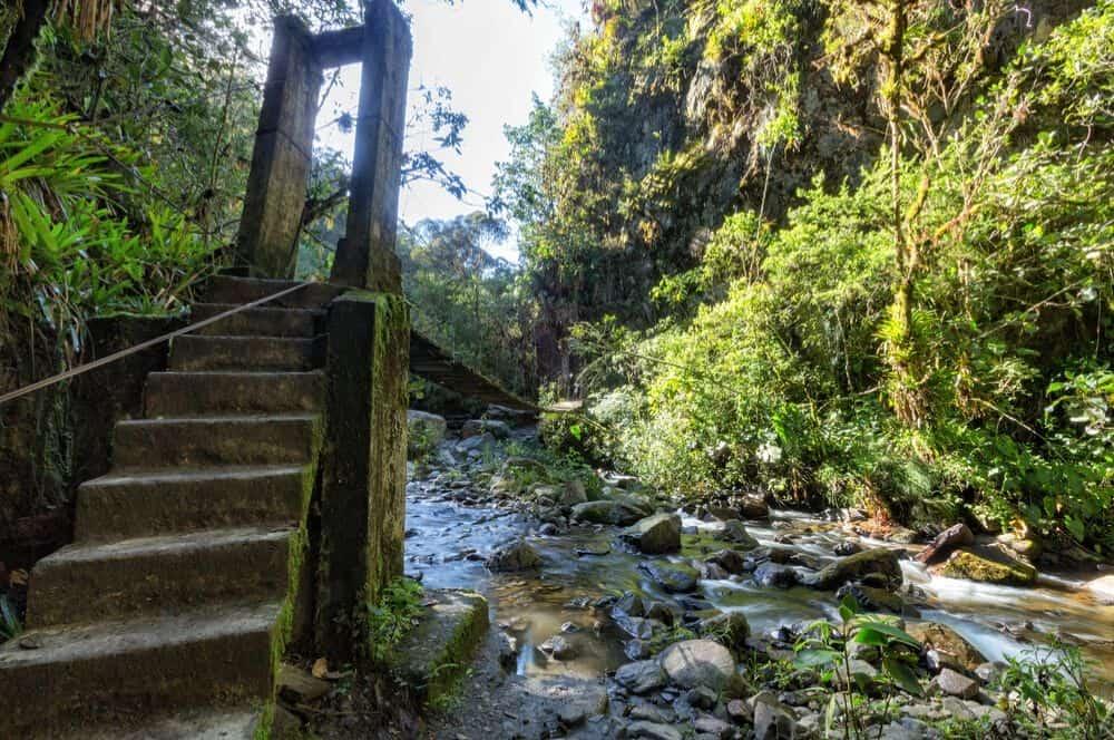valle de cocora trail salento