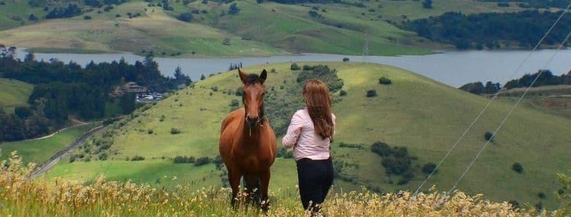 Horseback riding tour Bogota