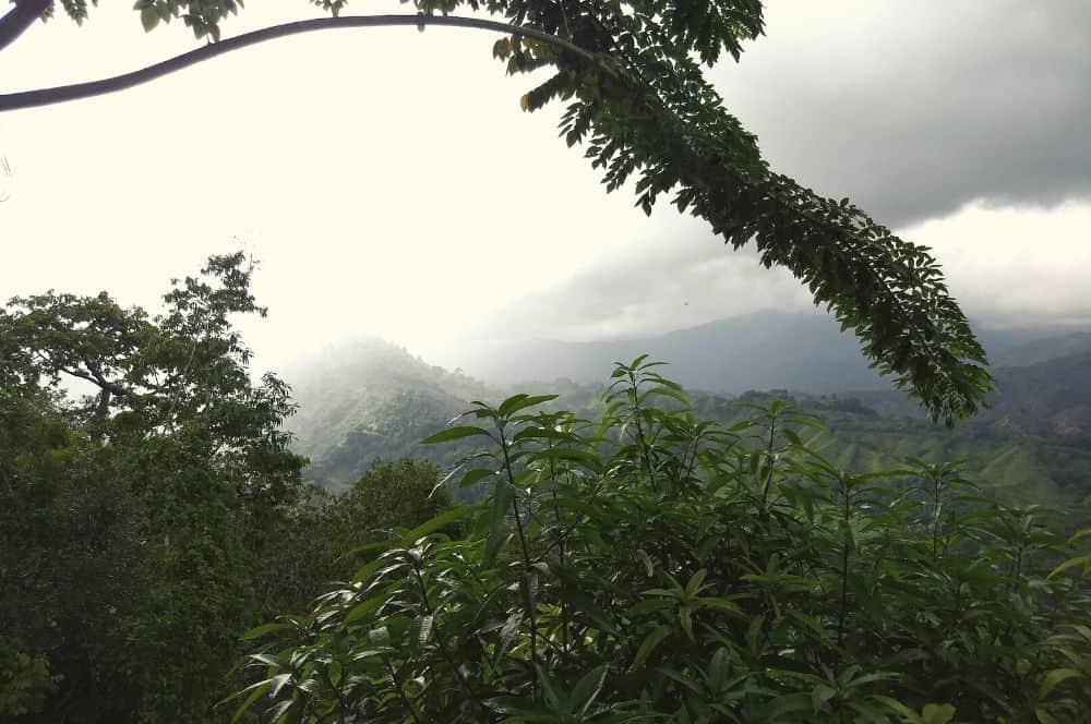 Landscape ciudad Perdida Colombia (1)