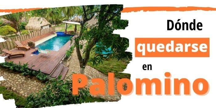 Cuáles Son los Mejores Hoteles en Palomino, Guajira 🌴(2021)