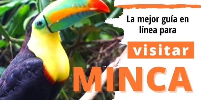 Cómo Disfrutar de Minca, Colombia 🏞️: La mejor Guía del 2021