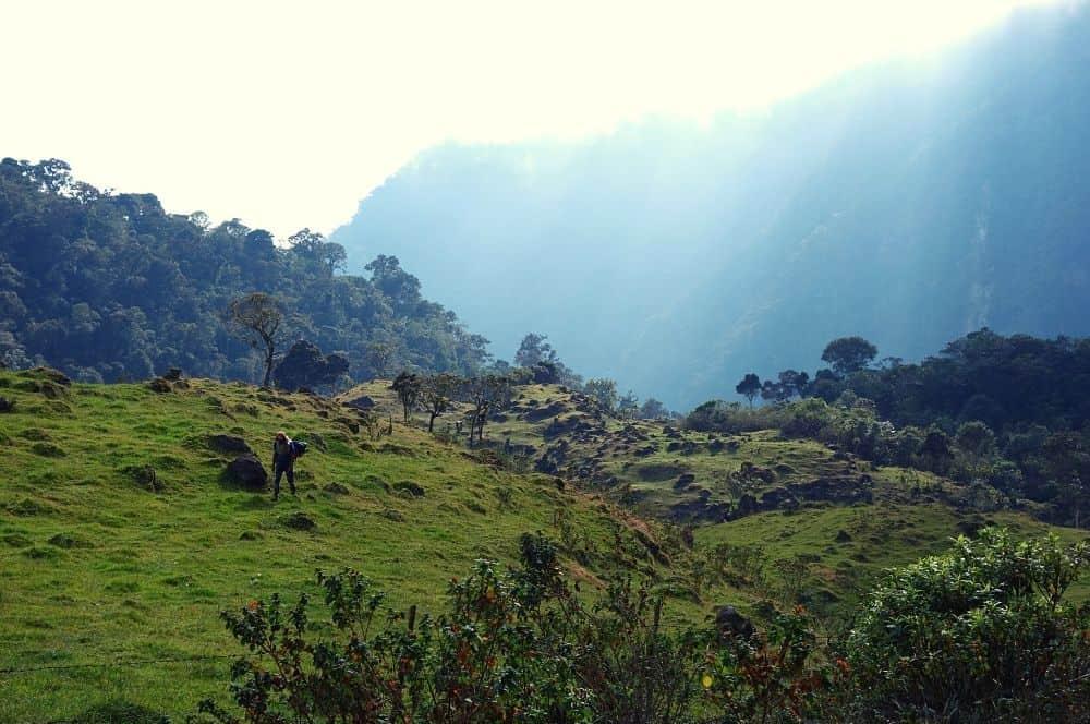 Jour 1 Los Nevados boque Andino (1)