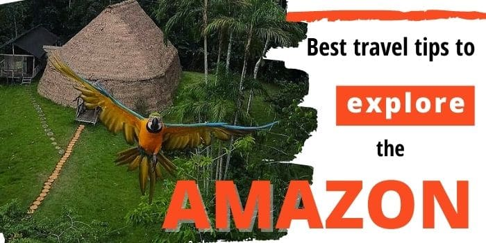 How To Plan Your Amazon Jungle Tour From Leticia 🐵 (2021)
