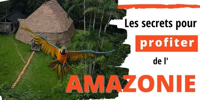 Comment Visiter l'Amazonie Colombienne depuis Leticia [2021]