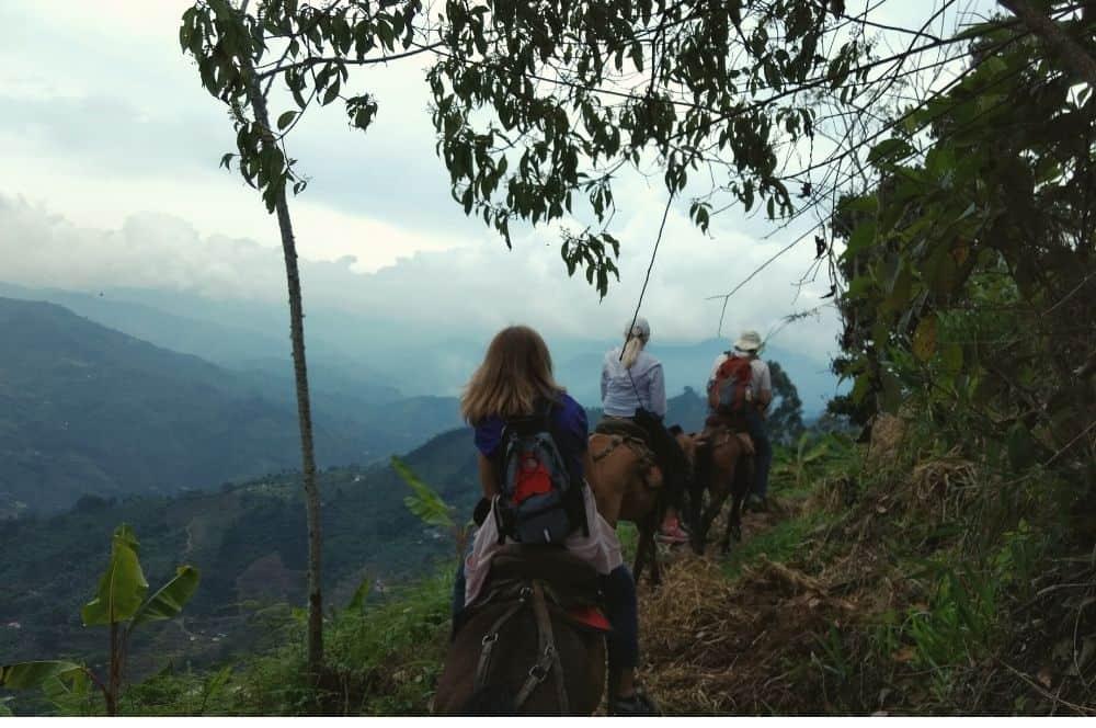 Horseriding Jardin (1)