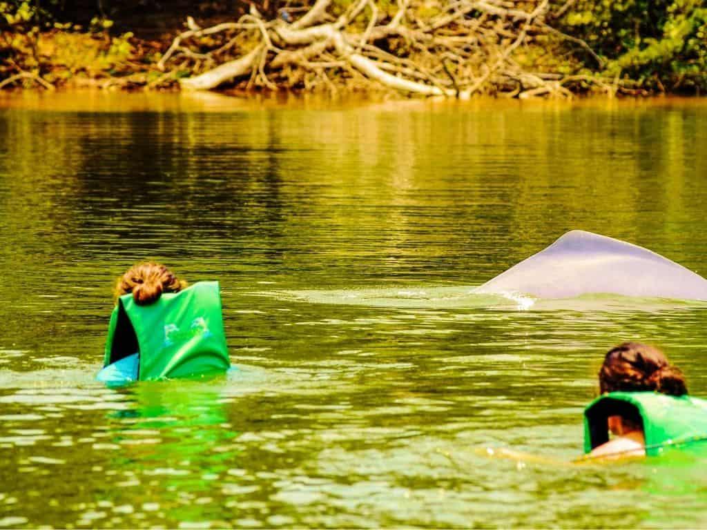 Ruta Delfines Geotours del Guaviare (1)