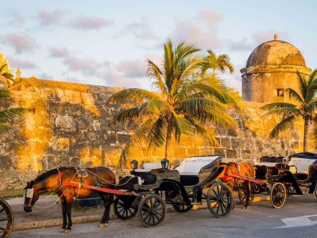 horse-drawn carriages of the old city (1)