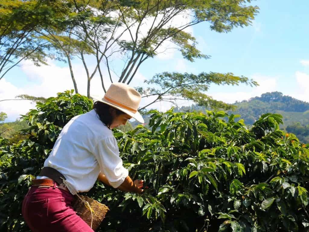 Coffee in Jerico Kaan