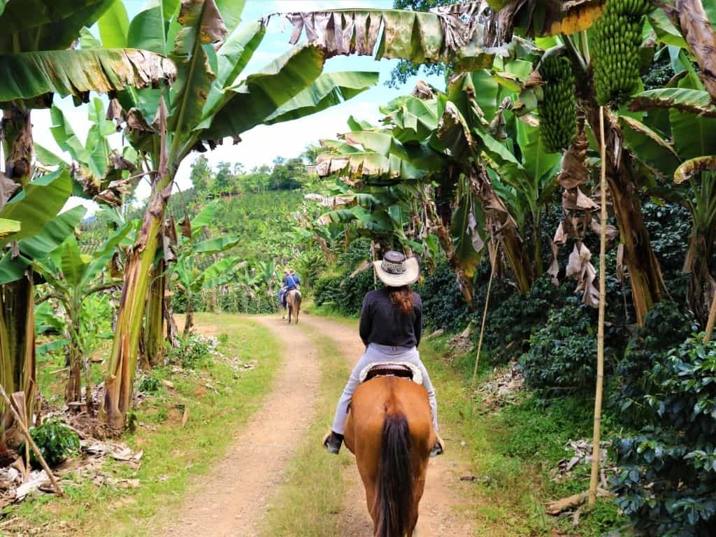 Horseback riding Jerico Kaanas (1)